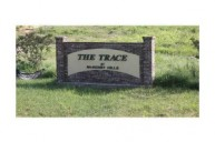 Trace Drive, Mchenry, MS, 39561